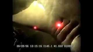 Découverte  d'un ENORME requin des profondeurs