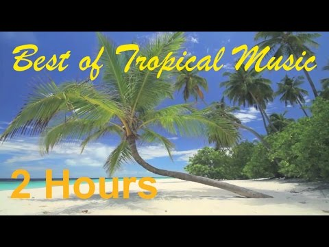 Tropical Music & Tropical Music Hawaii: 2 Hours of Best Tropical Music Instrumental (Upbeat Mix)
