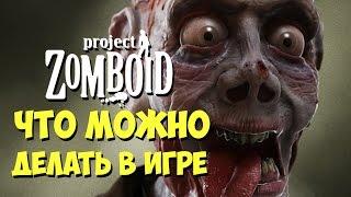 Что можно делать в игре Project Zomboid? Быстрый обзор!