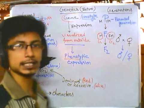 Genetics part 1 introduction to advanced genetics