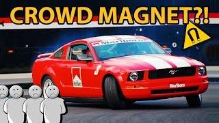 5 Reasons Why Mustangs Always Crash!!