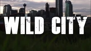 The Pretty Reckless - Wild City VIDEO (with lyrics)