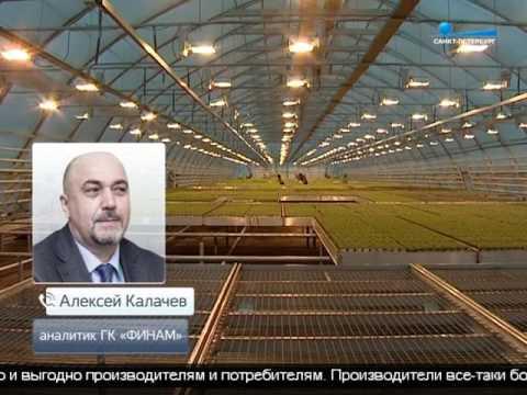 СМИ: На Петербургской сырьевой бирже может начаться торговля минеральными удобрениями