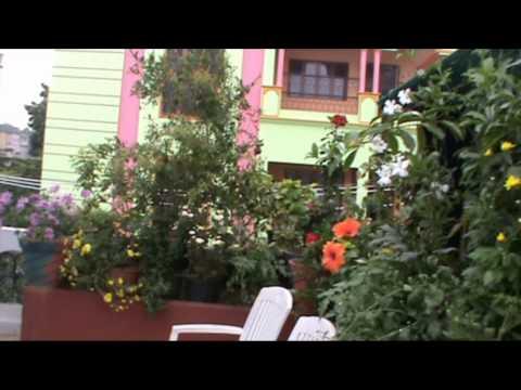 Terrace kitchen garden by rupa reddy youtube for Terrace kitchen garden