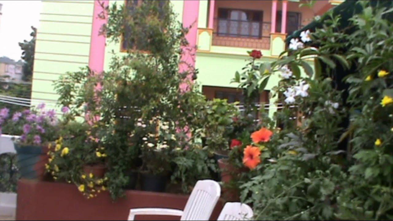 Terrace Kitchen Garden by Rupa Reddy - YouTube