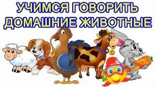 Развивающее видео для детей от года. Домашние животные. Мультик про животных