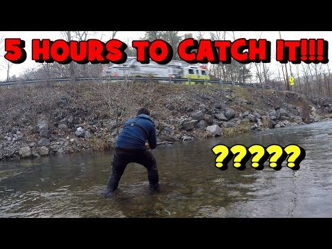 120% FRUSTRATION! It Took Me FIVE HOURS To Catch It...! (2020 Roanoke Trip - EP 2/3)
