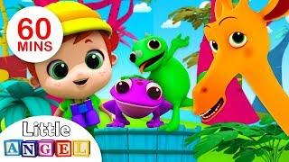 Animal Friends in the Jungle | Five Little Ducks & Kids Songs by Little Angel