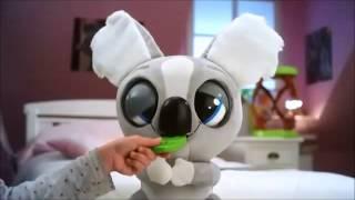 Koala Kao Kao de IMC