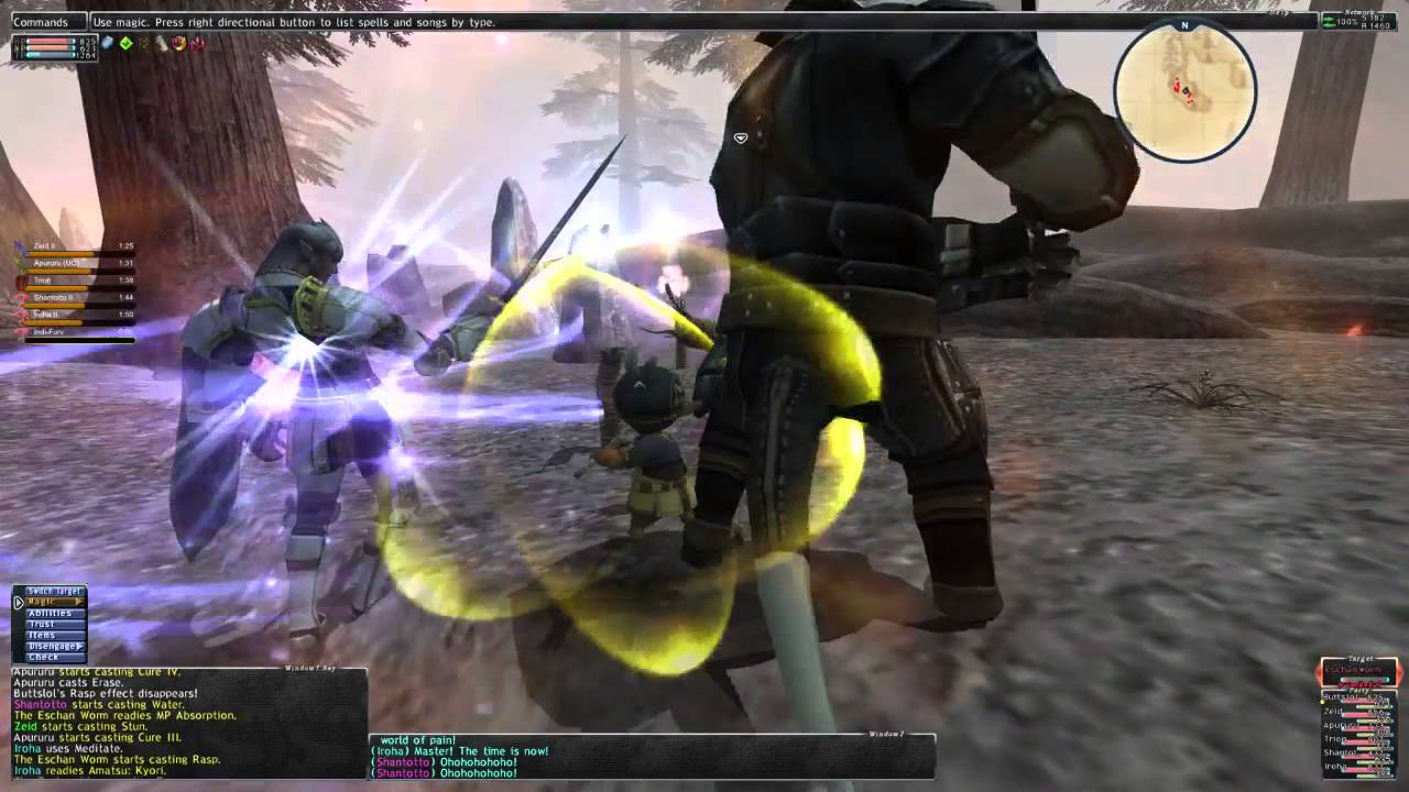 What is FFXI like these days anyway? (Leveling)