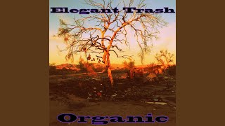 Provided to YouTube by CDBaby Touch the Ceiling · Elegant Trash Organic ℗ 2016 Lee Austin Hoffman Released on: 2016-10-31 Auto-generated by YouTube.