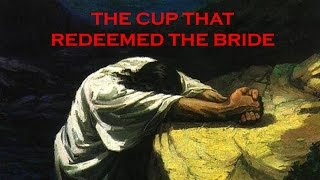 The Cup That Redeemed the Bride