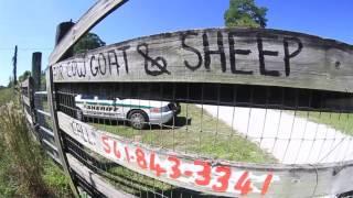 ARM Loxahatchee Raid 3 illegal slaughter farms
