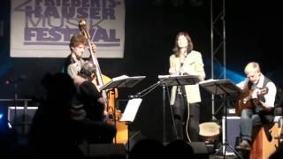 Saitenwind auf dem 2. Friebi-Festival: The Groover