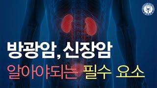 신장암 / 방광암: 최신정보와 알아야할것들