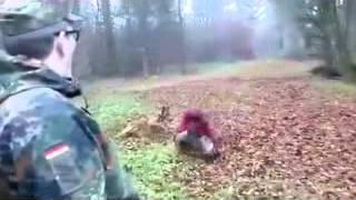 Собака сбила мужика с ног