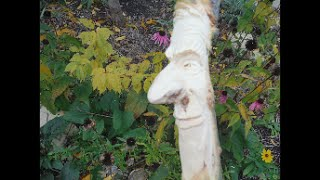 Carving A Wood Spirit Using A Branch As A Nose