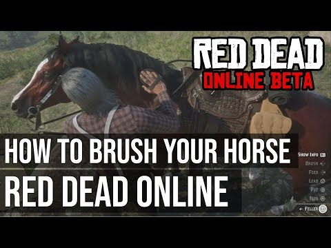 How to Brush your Horse in Red Dead Online - Red Dead Redemption 2