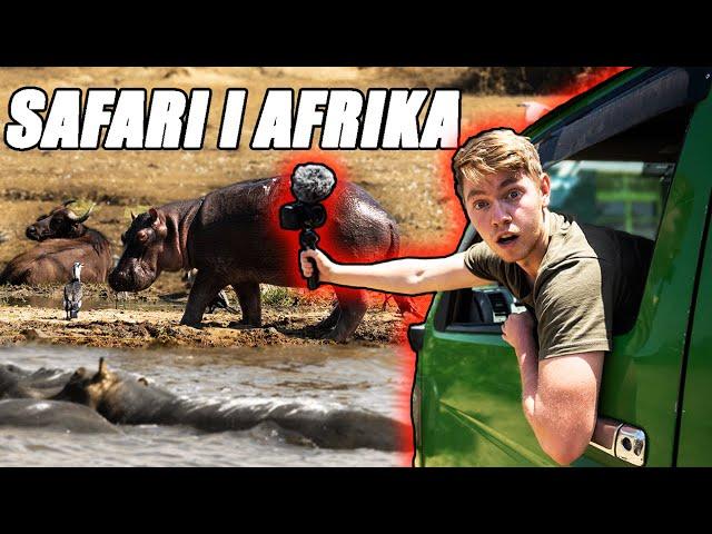 FARLIGE DYR I AFRIKA | Mads Gottlieb & Benjamin Mann-Nakel