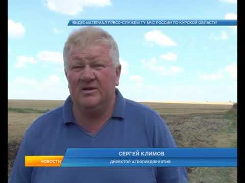 Курская область может потерять часть урожая