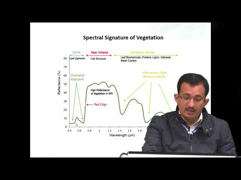 28 Jan 2019 Hyperspectral Remote Sensing for Forestry Applications by Dr.  Hitendra Padalia