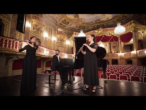 Trio DOBONA plays Webster: Carmen Rhapsody for Flute, Clarinet and Piano