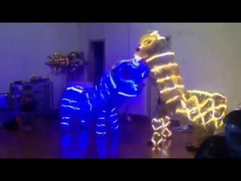 led lion dance basic mua lan co ban