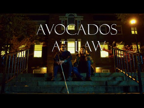 matt foggy avocados at