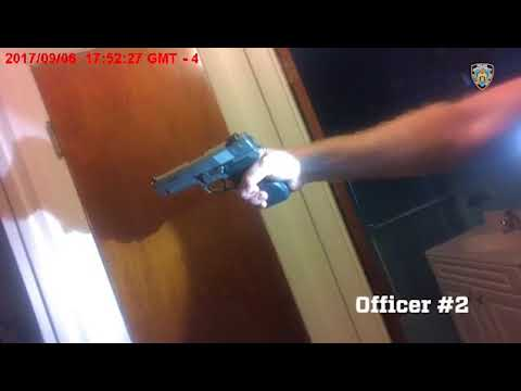 NYPD Body Cam Footage From Bronx Police Killing: Officer No. 2