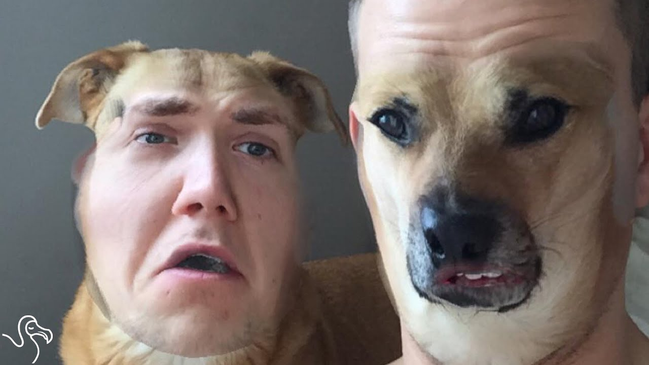 Trade Faces With your Pet For The Ultimate Freakout