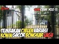 Konin Isian Ciblek Kombinasi  Mp3 - Mp4 Download