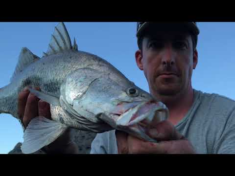 Cairns Fishing Land Based