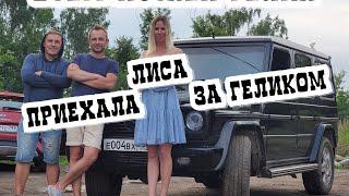 ЛИСА РУЛИТ хочет КУПИТЬ ГЕЛИК СИНДИКАТА ЖЕКИЧА ДУБРОВСКОГО.