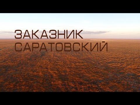 """Заказник """"Саратовский"""". ФГБУ Национальный парк Хвалынский"""
