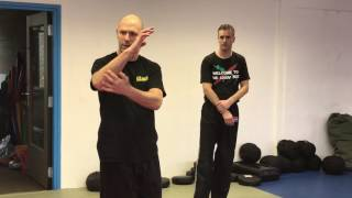 Outside Defenses with Amnon Darsa at Institute Krav Maga Netherlands.
