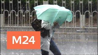 Погода в Москве: в пятницу ожидаются ливни из-за антициклона - Москва 24