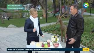 Как похудеть? В гостях - Владимир Миркин, диетолог. Эфир от 12.10.2016