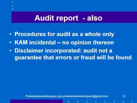 Audit reporting 2017