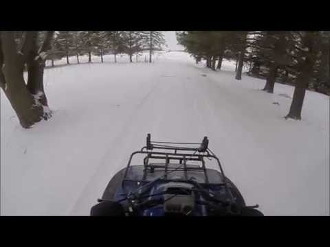 Riding The Snowmobile Trails