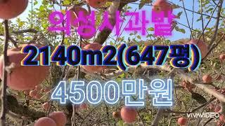 귀농하실분께  추천합니다.  사과밭2140m2(647평…