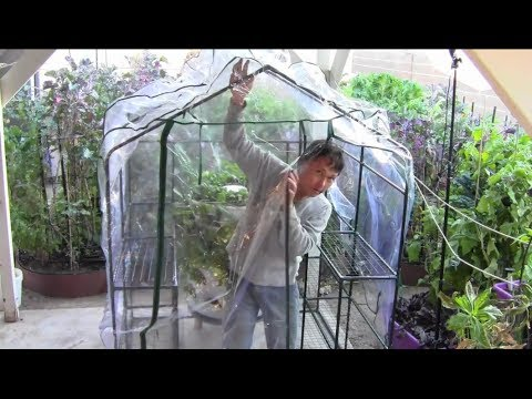 How To Build A 17 50 Greenhouse Without Any Tools Youtube