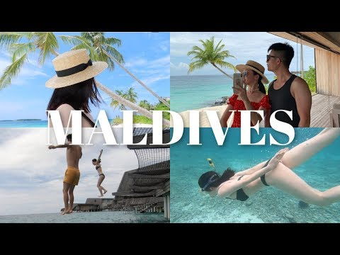 MALDIVES VLOG | 马尔代夫之旅 -- 潜水、看见海龟、在海边放空、看日落