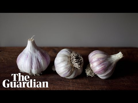 Jim E. Chonga - Who Would've Thought a Simple Video About Peeling Garlic Would Go Viral?