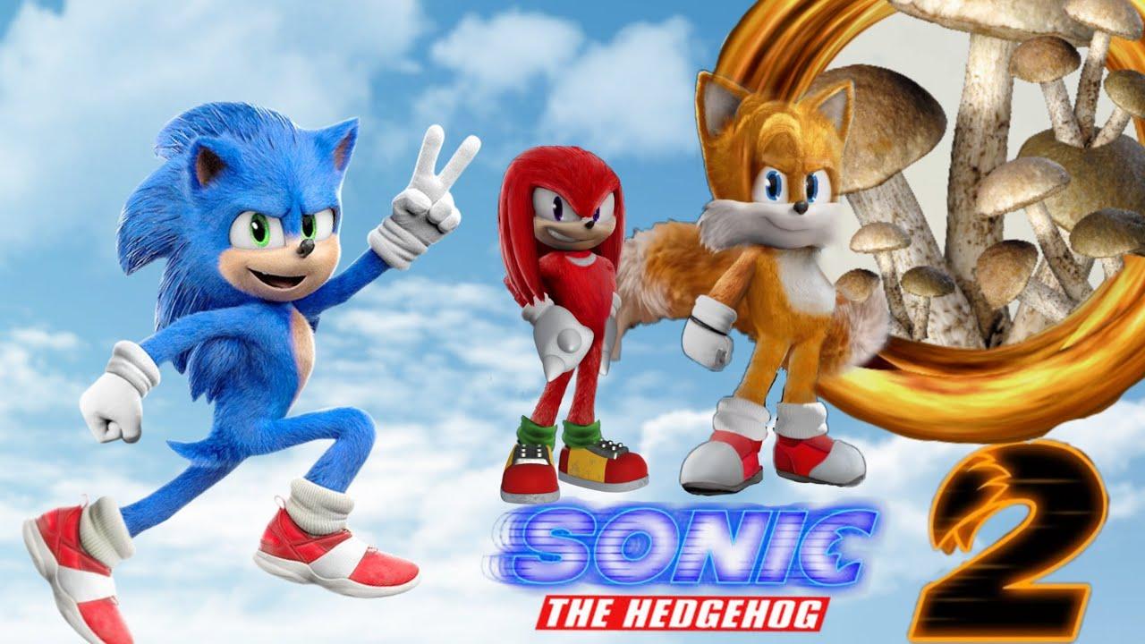 Que pasara en Sonic 2