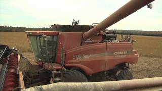Soybean Harvest Winds Up In Middle Georgia