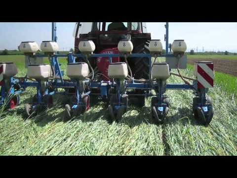 TILMAN-ORG: Reduced tillage and green manures (project description, Nov. 2011)