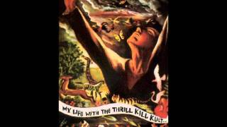 Watch My Life With The Thrill Kill Kult These Remains video