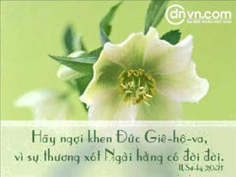 Chao Lua Thieng