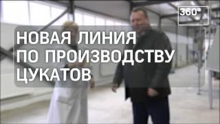 Цукаты начали производить в Орехово-Зуевском районе