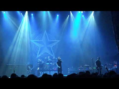 Alter Bridge - Shed My Skin (live)